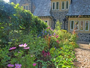 The cottage garden looking towards the house.